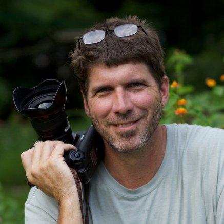 David Stembridge