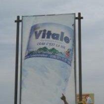 Marty Vitale